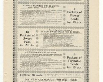 1899 Maule's Seeds Full Ad Page: Pansies, Sweet Peas, Flowers