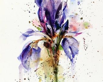 IRIS Floral Watercolor Print, Flower Painting, Watercolor Flower,  by Dean Crouser