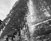 Temple of the Gods | Tika...
