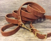 Personalized Brown Leather Dog Collar with Matching Leash and FREE Name