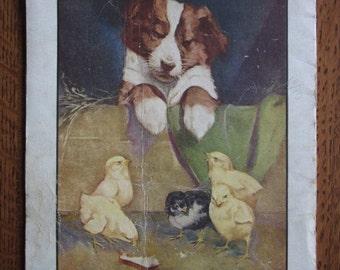 1933 Linen Oversized Children's Picture Book,Friendly Animals,Roy Best,Farm,Barnyard Animals,Vintage Illustration,Rustic Wall Art,Decor,Baby