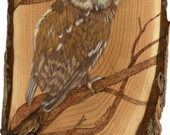 Screech Owl  small Limited edition prints of pyrographic art