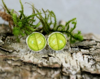 Green Leaf Stud Earrings, Silver Plated, Glass Cabochon