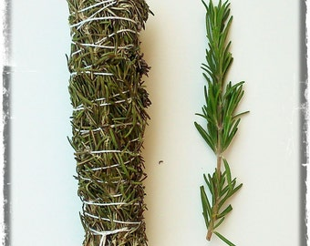 Bundle of Rosemary for smudging. Smudge Stick. Rosemary