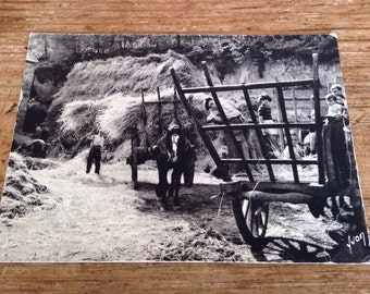 French Sepia Postcard - Hay harvest