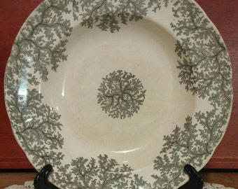 1800s Copeland and Garrett Late Spode bowl/ Early Transferware/  Seaweed pattern/ Monochrome lobed dish.
