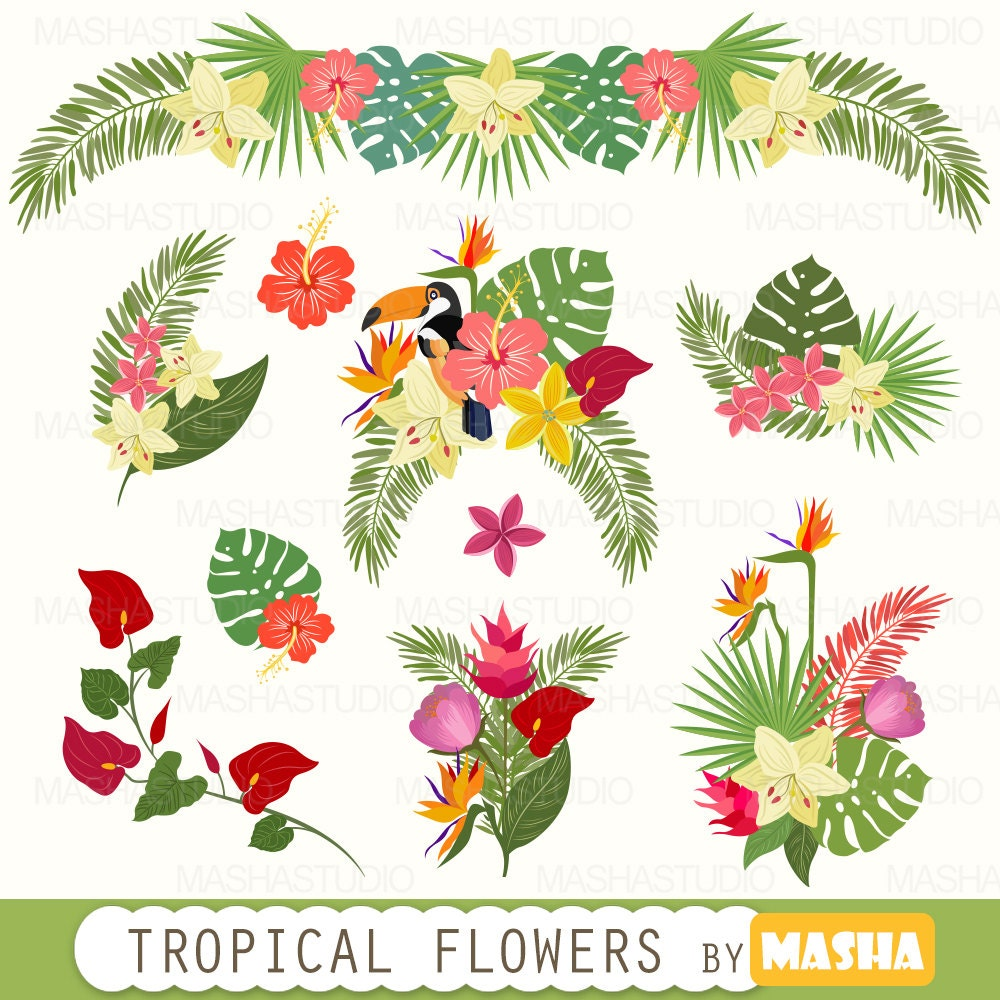 """Tropical clipart: """"Tropical Flowers Clipart"""" with exotic ..."""