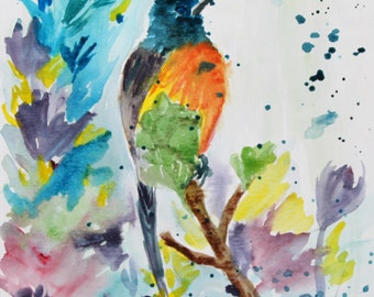 Hummingbird original water color painting