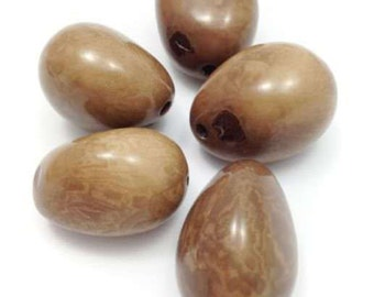 Tagua Nut large, light brown, 45mm, trailer 1 Piec