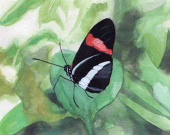 Between Flights, Butterfly Painting #2 - Original or Print