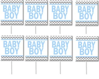 Baby Boy Birthday Party Cupcake Decoration Toppers Picks -24pack