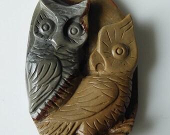 Beautiful Owl Drilled Pendant Stone - Polished Jasper gem