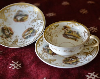 Antique Davenport Hand Painted Cup and 2 Saucers