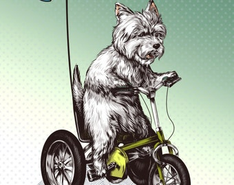West Highland Terrier Tricycle Print