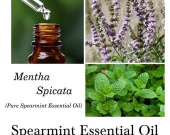 Spearmint Essential Oil, Spearmint Oil, Mentha spicata – 100% Pure Authentic Spearmint EO
