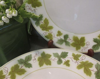 5 Pretty Vintage Dinner Plates, Mikasa (Japan) Cera Stone, Greenwood Pattern, 3137-M, Green Ivy Pattern, 10.25'' Mid Century Plates