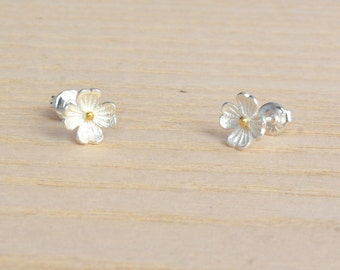 Beautiful Little Buttercup Flower Sterling Silver Stud Earrings with Part 18ct Gold Vermeil m57