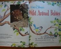 Walt Disney's Wild Animal Babies ~ 1965