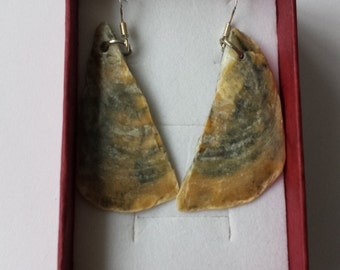 Natural shell earrings with shell from Cornwall's beaches UK