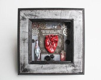 Unique Anatomical Human Heart Oddities Shadow Box