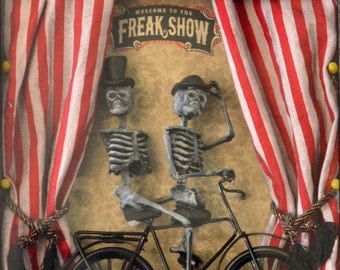 Freak Show Shadow Box Wall Accent, Bicycle
