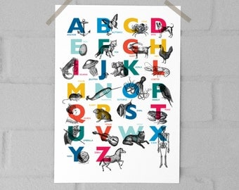 Vintage Alphabet A4 Print - Childrens ABC Animal Nursery Bold Bright Gill Sans Typography Wall Art Print