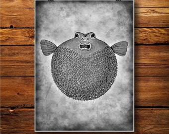 Balloonfish  print, globefish decor, blowfish poster  BW366