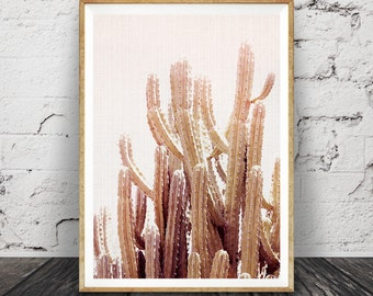 Cactus Print, Blush Pink Wall Art, South West Printable, South Western Decor, Large Digital Download, Desert Photography, Cactus Photo