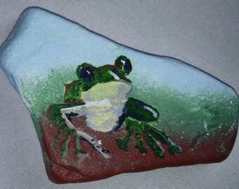 Tree Frog Painted Rock