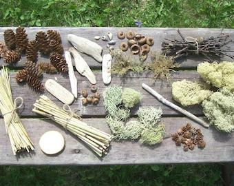 Fairy Garden Starter Kit, all natural.   :)  Miniatures, gnomes, fairies, craft supplies.