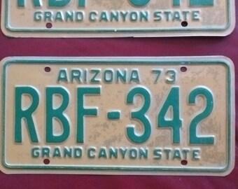 Vintage Arizona license plates 1973