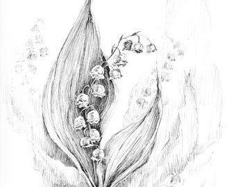 Lily of the valley art, original artwork, botanical sketches, black and white florals, spring flower sketch art, lily drawing illustration