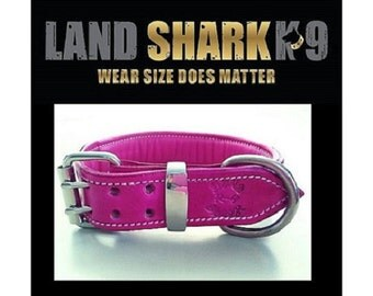 Pink Leather Dog Collar with Soft Pink Leather Padded Inner Lining
