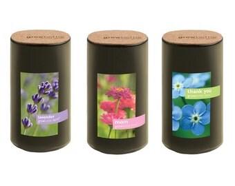 Reclaimed  Wine Bottle Garden – Grow Bottle Demi – Indoor Garden – Flowers – Gift – Mother's Day - Mom - Lavender - Forget Me Not - Zinnias