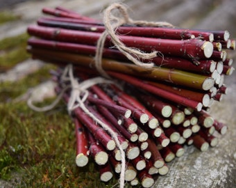 Red Willow BRANCHES bundles, 25 crafting twigs, stick bundles, real natural twigs, craft sticks, branches and twigs, DIY twig bundles
