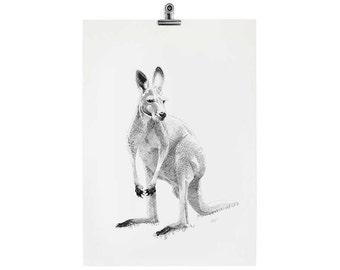 Skippy the Kangaroo #2 Print