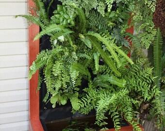Vertical Garden Unit