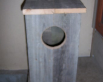 Screech Owl House Nesting Box and other owls