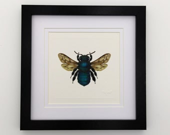 Peacock Carpenter Bee Miniature Unframed Print x 1