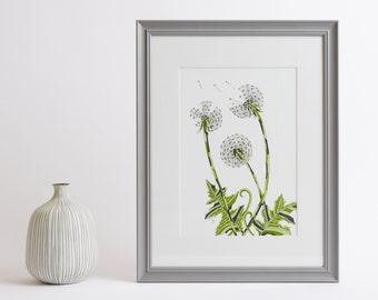 Framed Dandelion Clocks Print