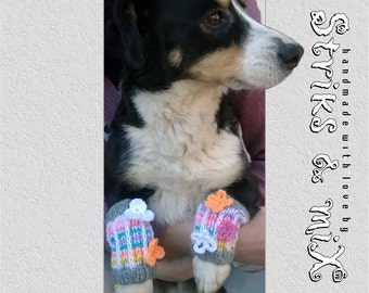 Knit leg warmers with flowers for dogs, dog leg warmers, knit dog fashion, pet accessories, knit socks for dogs, socks with flowers