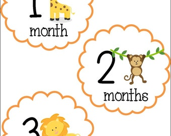 Jungle Animals Monthly Baby Stickers