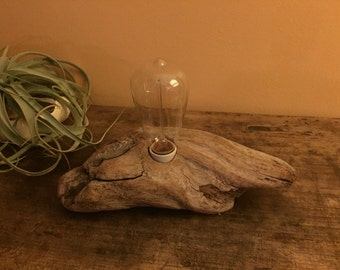 Handcrafted Mendocino Driftwood Lamp with Edison Bulb