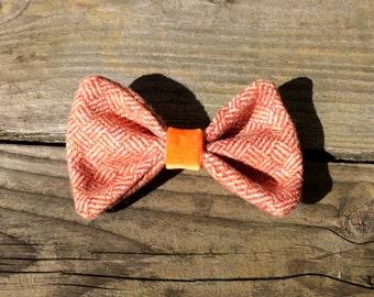 Dog Bow Tie - Tangerine