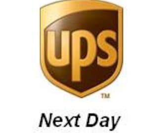 UPS Next Day Air
