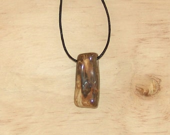 Natural petrified wood pendant