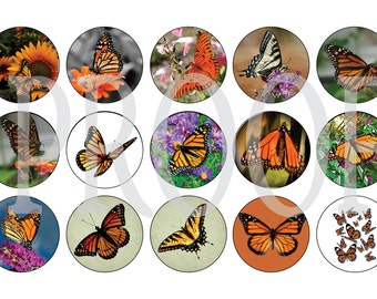 Digital Bottle Cap Image Sheet - Butterfly - 1 Inch Digital Collage - Instant Download