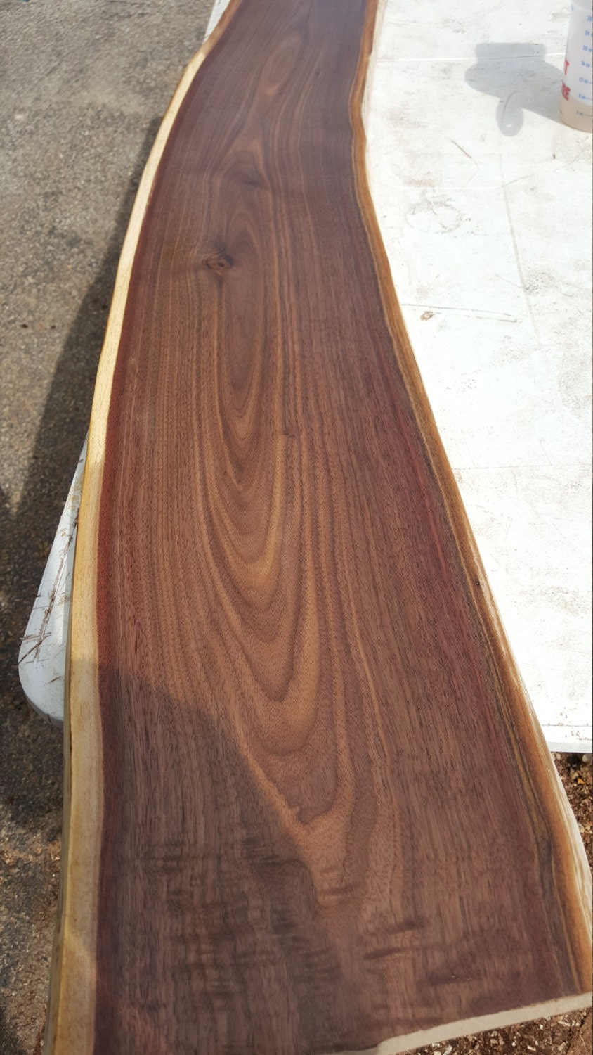 Black Walnut Live Edge Slab 3