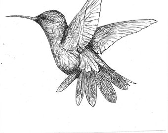B&W Humming Bird