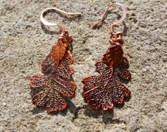 Delicate Copper Oak Leaf Earrings